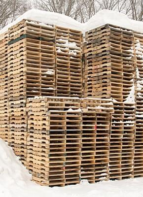 How to avoid mildew on wooden pallets? Discover ways to protect your pallets