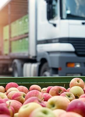 Keep your fruit and vegetables fresh with the proper logistics packaging