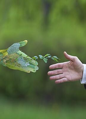 5 steps to build a sustainable supply chain